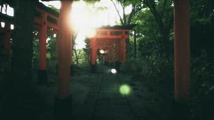 Explore-Kyotos-Red-Gates-4.jpg